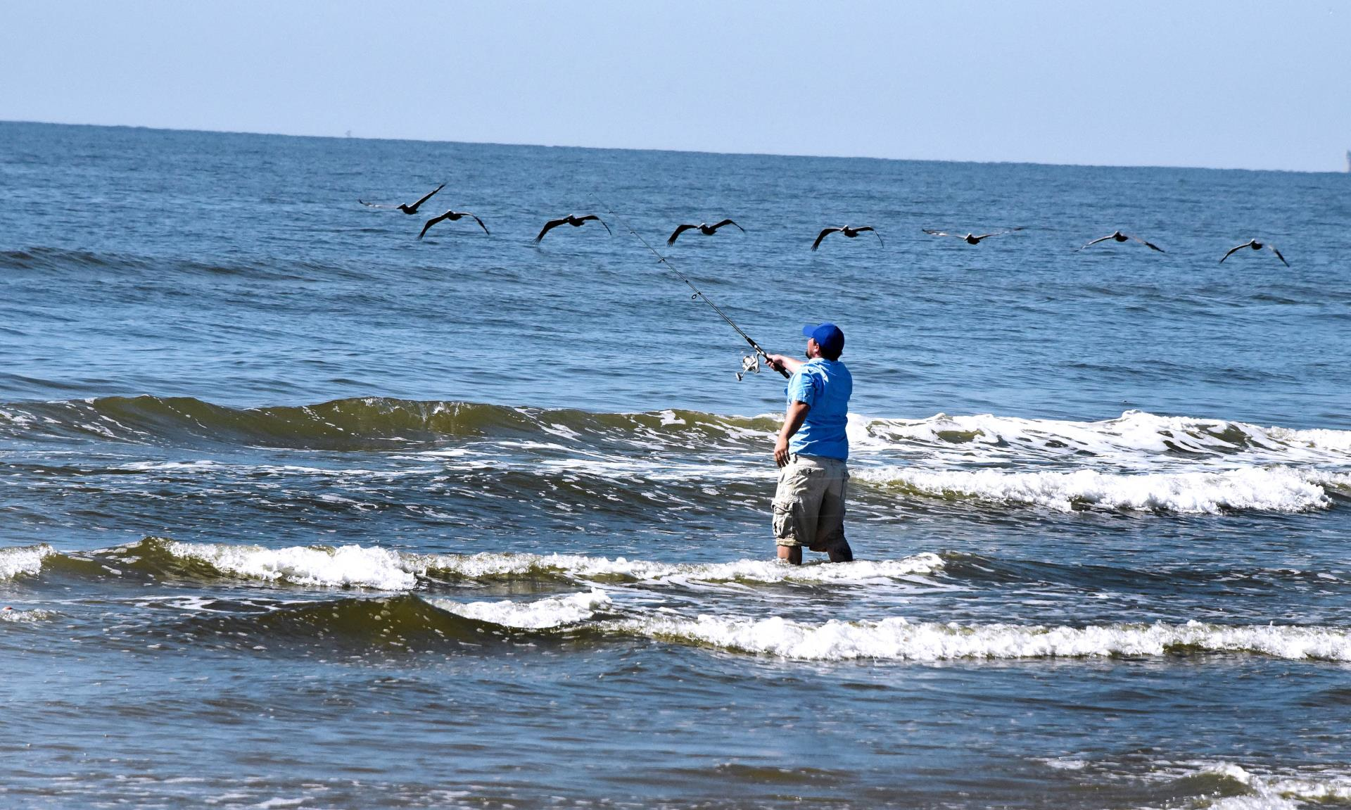 man fishing in surf, pelicans near HDR
