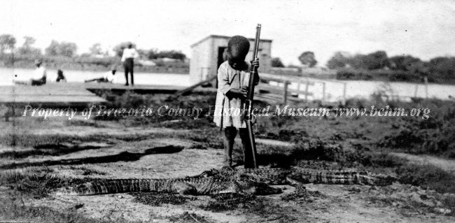 African American child holding a rifle next to a couple of alligators on the bank of the Brazos River.